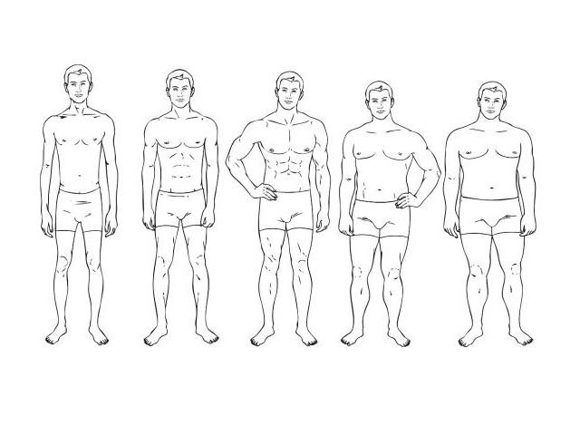 típos físicos masculinos